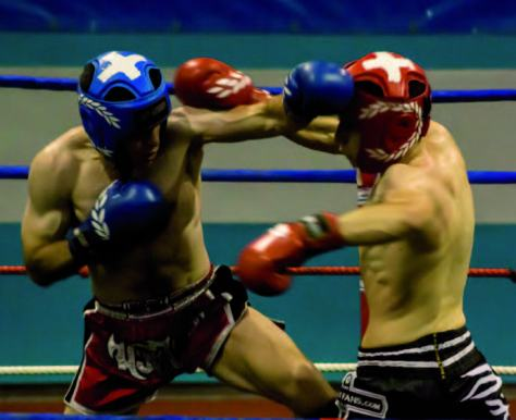 Los combates son muy duros por la potencia de los golpes